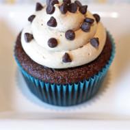 gluten free vegan mocha cupcakes + crave bake shop giveaway