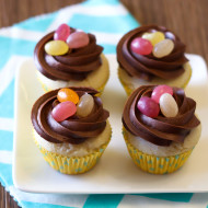 gluten free vegan mini easter chocolate nest cupcakes