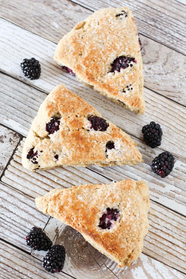 Gluten Free Vegan Blackberry Scones. Fresh blackberries, nestled into a tender fresh-baked scone.