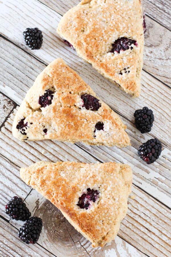 Gluten Free Vegan Blackberry Scones. Fresh blackberries, nestled into a tender fresh-baked scone.